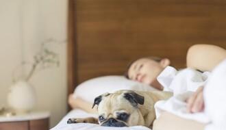 Duže spavanje vikendom nije korisno za naše zdravlje