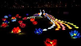 """""""Kineski festival svetla"""" produžen do 23. februara"""