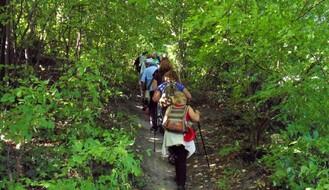 Organizovane šetnje Fruškom gorom – kad, s kim i zbog čega? (FOTO)