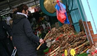 FUTOŠKA PIJACA: Počela prodaja badnjaka