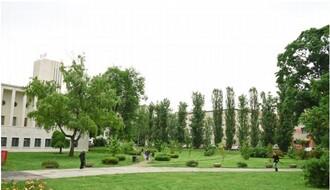 """Raspisan konkurs za uređenje """"urbanih džepova"""" na četiri lokacije u Novom Sadu"""