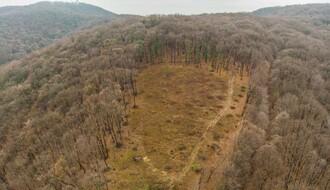 "Pokret OŠFG najavio prikupljanje potpisa za zaštitu drveća Fruške gore usled ""enormne planske seče"""