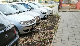 """FOTO: U Tolstojevoj ulici građani povadili više od polovine sadnica """"Gradskog zelenila"""""""