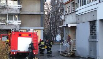 Požar u Šeksipirovoj, goreo stan