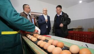 FOTO: Vučević i Nedimović obišli poljoprivredna gazdinstva u Stepanovićevu, Kisaču i Rumenki
