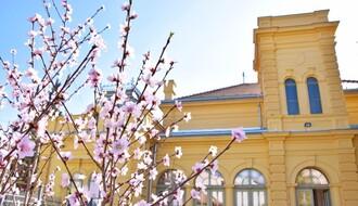 Svetski dan komšija u petak u Eđšegu