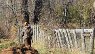 KRIVOLOV: Novosađanin ubio srnu i lane, krio četiri puške