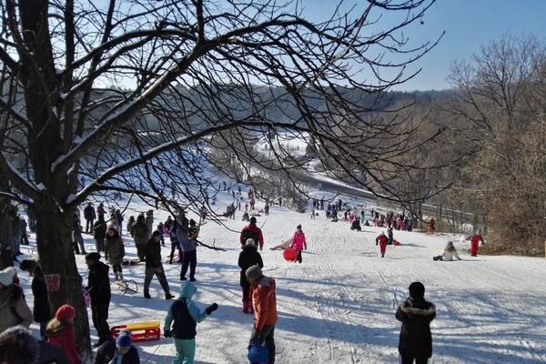 FOTO: Sankanje i prelepi zimski prizori na Fruškoj gori
