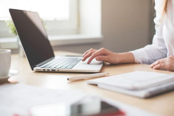 Probni popis počinje u ponedeljak, Novosađani imaju mogućnost samopopisa putem interneta