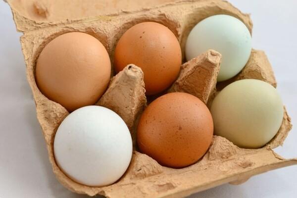 Postoji li razlika između belih i smeđih jaja?