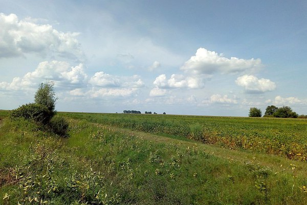 Grad Novi Sad pomaže poslodavcima prilikom angažovanja sezonskih radnika u poljoprivredi