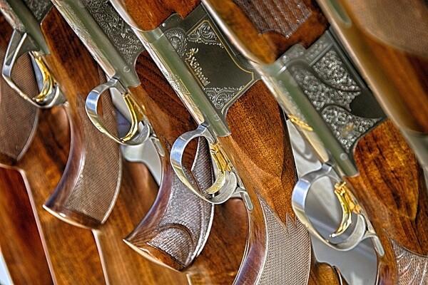 Dom zdravlja: Lekarski pregledi za držanje i nošenje oružja
