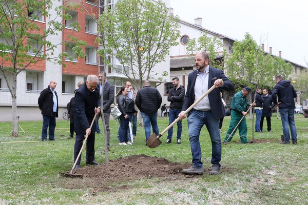 U naredne dve godine u Novom Sadu 10.000 novih stabala