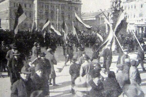 Prvi gradski političari i izbori u prošlosti novosadskoj