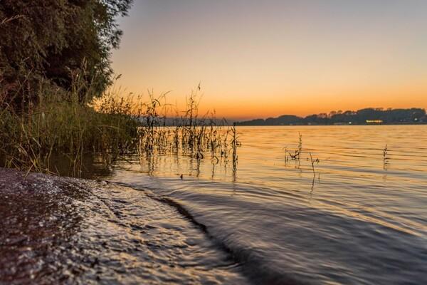 MUP: U Dunavu pronađeno telo nestale Novosađanke