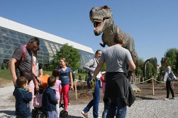 Dino park od sutra ponovo otvara kapije Novosađanima