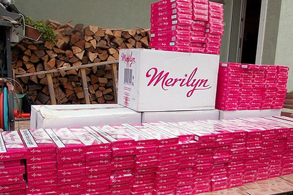PETROVARADIN: Zaplenjeno 9.420 paklica cigareta (FOTO)