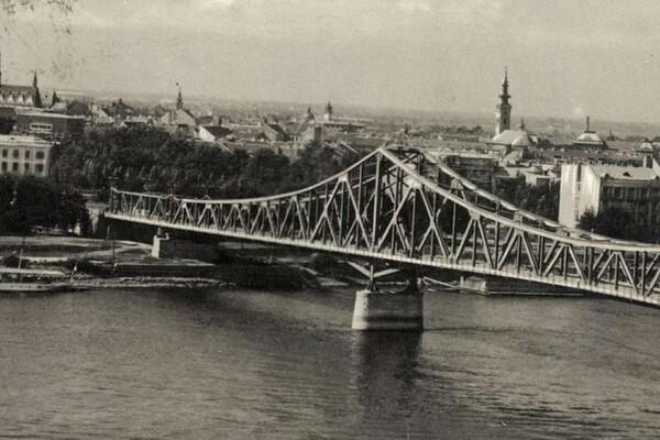 Jedan novosadski most koji nikad nije izgrađen