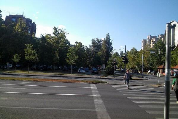 Novosadska policija rasvetlila više krađa na štetu taksi vozila