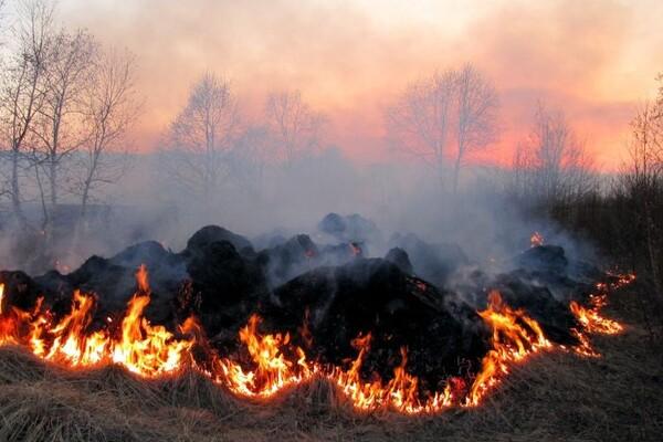 Na njivama u okolini Novog Sada ove jeseni izbilo 11 većih požara