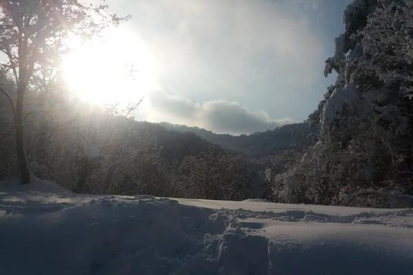 Nestali mladići pronađeni na Fruškoj gori: Apel građanima da ne idu na planinarenje