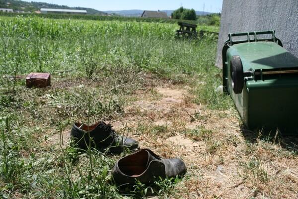 UŽAS U PETROVARADINU: Pitbulovi izujedali čoveka do smrti (FOTO)