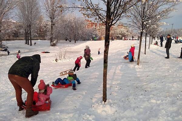 SNEŽNE ČAROLIJE: Kuda na sankanje u Novom Sadu i okolini