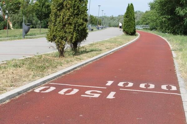 NAŠ IZBOR: Pet najboljih lokacija za trčanje u Novom Sadu i okolini (FOTO)