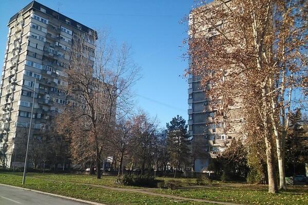 OBEĆANJE: Novi Sad će dobiti katastar zelenih površina