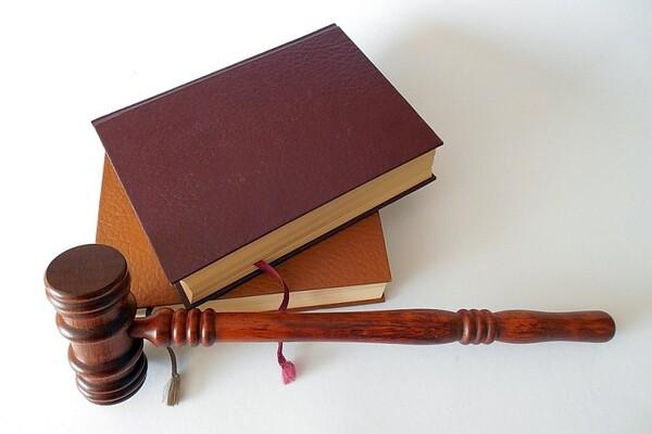 """Aleksin zakon"" na dnevnom redu 11. februara"