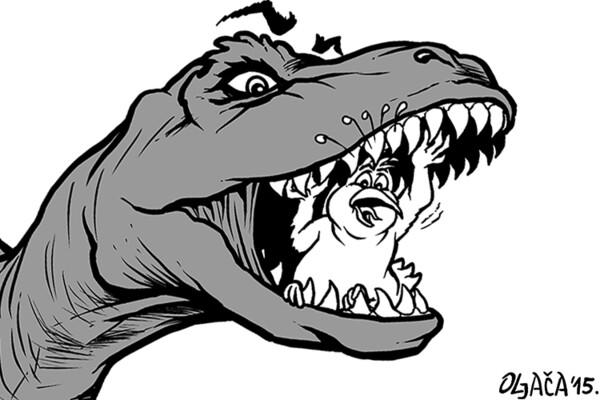 Odinosaurusivanje Novog Sada: Golubovima sa Trga stiže rodbina!