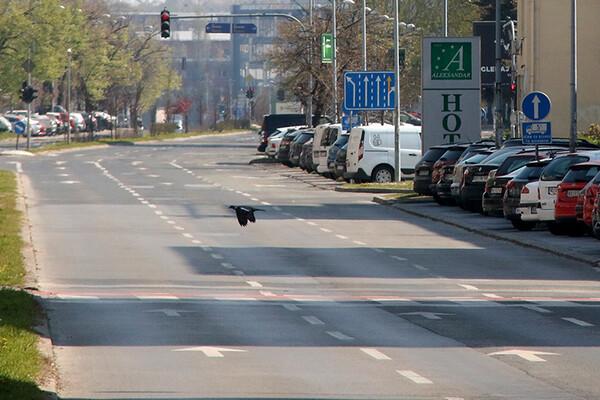 KON: Mera 24-časovne zabrane kretanja ima smisla samo u Beogradu i drugim žarištima