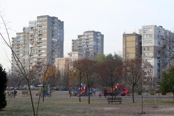 IZ PRVE RUKE: Poteškoće profesionalnih upravnika u Novom Sadu