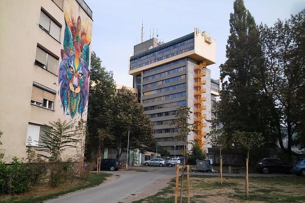 GRAĐANI U SKUPŠTINI: Stanarima u ulici Vladimira Nikolića smeta galama s obližnjeg igrališta