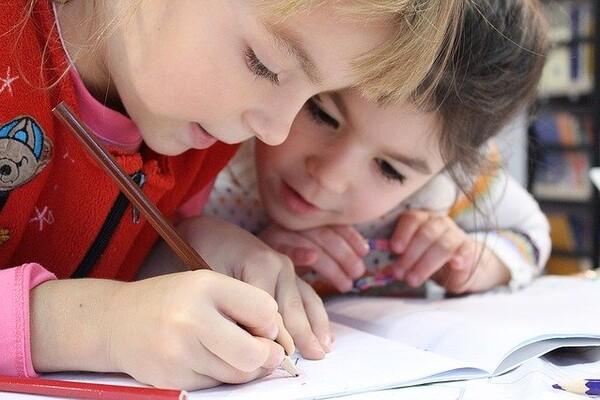 ŠARČEVIĆ: Roditelji će sami odlučivati da li će dete ići u školu ili će učiti od kuće