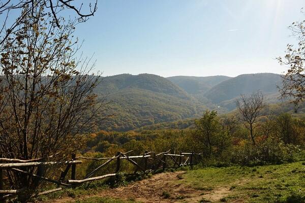 PRAZNIČNI VODIČ: Kuda za Prvi maj u Novom Sadu i okolini