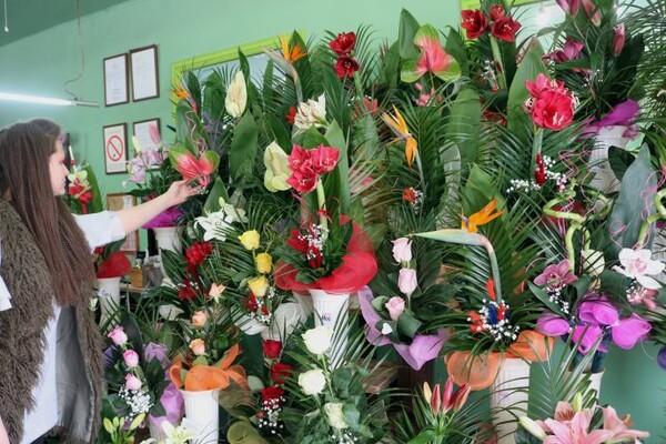 OSMI MART: Koje je cveće u modi i šta najčešće poklanjaju Novosađani (FOTO)