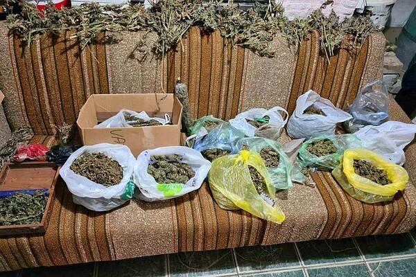 MUP: U kući u okolini Bača otkriveno više od četiri kilograma marihuane (FOTO)