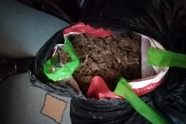 MUP: Zbog marihuane i amfetamina uhapšene dve osobe iz Novog Sada i Šapca