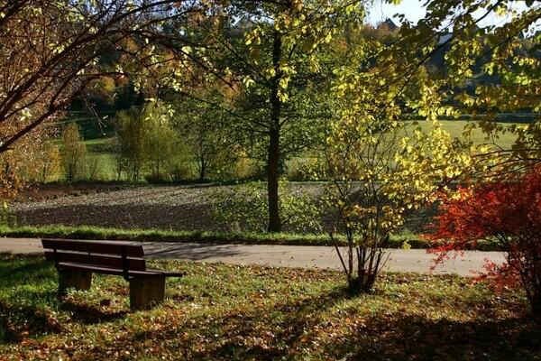 NS DOBIJA NOVI PARK: Umesto divljih deponija – zelena oaza