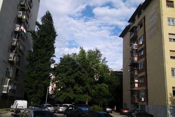 Vreme danas: Jutro oblačno, tokom dana sunčano, najviša dnevna u NS do 27°C