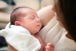 Vučević: U prethodnoj noći u Betaniji rođeno najviše beba u istoriji te institucije