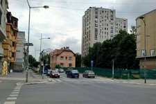 Ipak se seku stabla na uglu Stražilovske i Maksima Gorkog (FOTO)