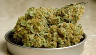 Novosadska policija u stanu bračnog para pronašla veću količinu marihuane
