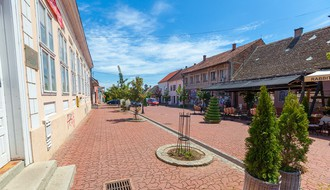 52 vikenda u Novom Sadu: Fruška gora – ka Irigu