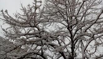Hladno sa snegom, najviša dnevna u NS oko 0°C