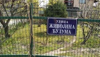 Ulica Živojina Ćuluma bez vode zbog havarije