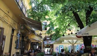 NAŠ IZBOR: Pet najlepših bašta novosadskih kafića (FOTO)