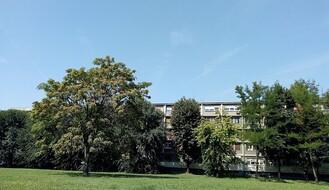 Sunčano i veoma toplo, najviša dnevna u NS oko 31°C