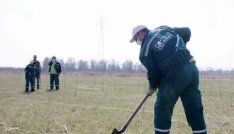 Počela sadnja vetrozaštitnog pojasa kod Nemanovaca (FOTO)